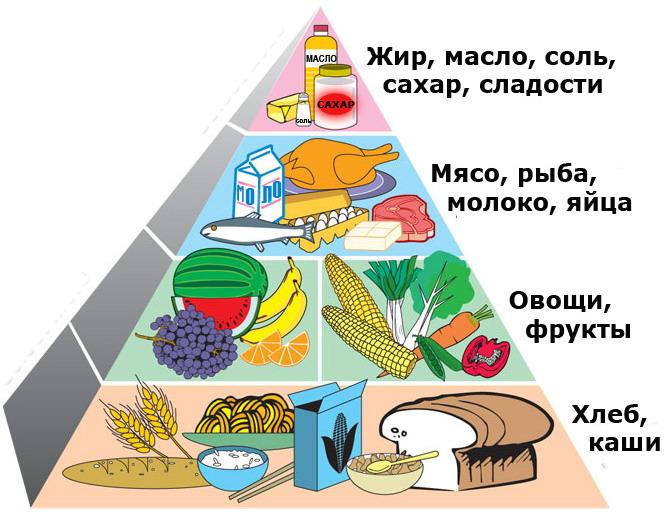 здоровое питание человека на день